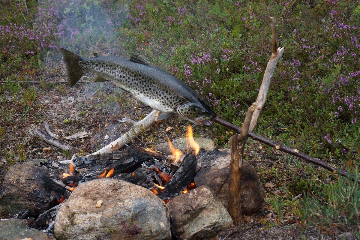 outdoor stockfisch rezept kanutouren. Black Bedroom Furniture Sets. Home Design Ideas